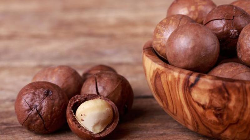 Как надпиливают орех Макадамия и делают прорези на скорлупе?