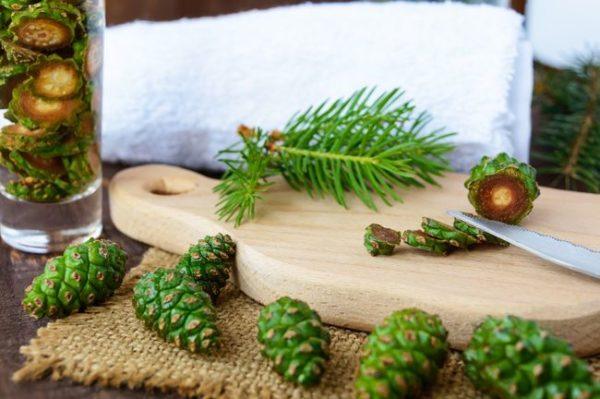 Кедровые орехи при простуде