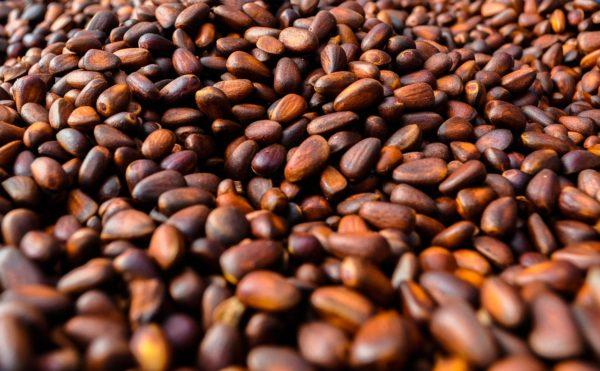 Настойка на кедровых орешках на самогоне рецепт с фото пошагово