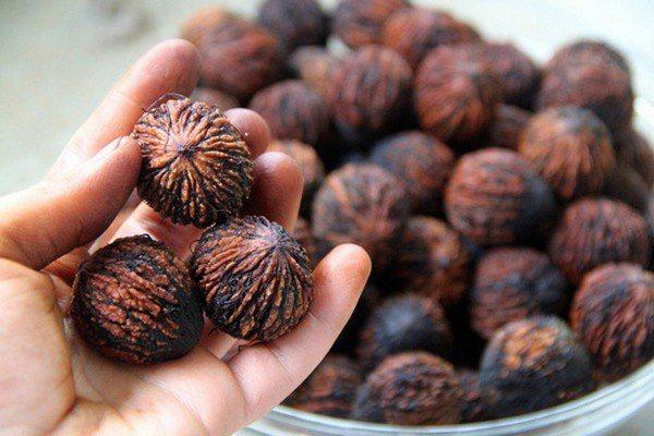 Орехи польза и вред для организма. Виды орехов