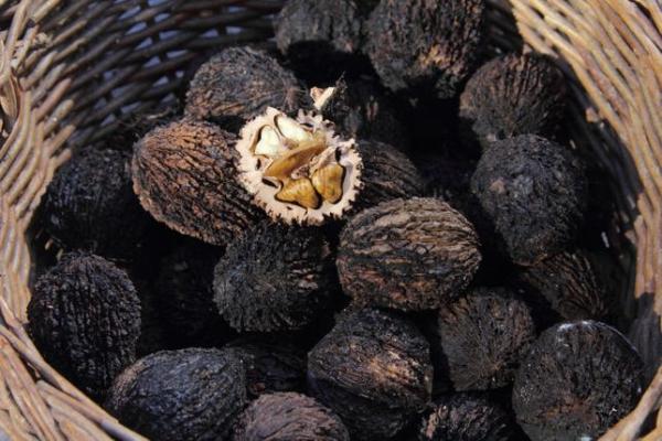 Плоды черного ореха